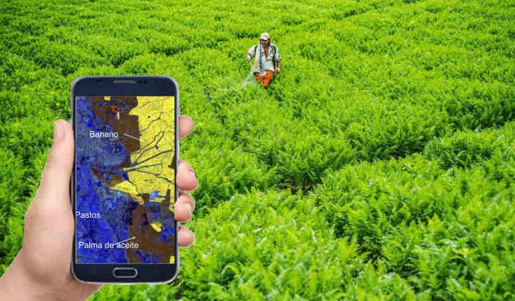 Transición de blockchain de la cadena de suministro agrícola y alimentaria